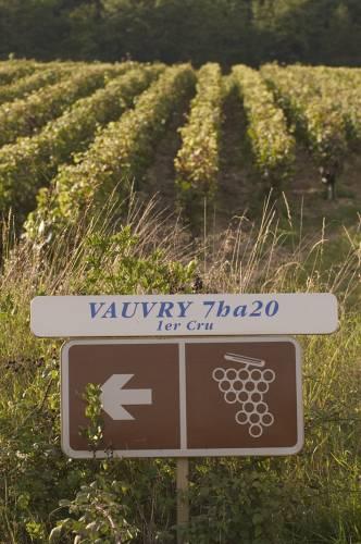 Vauvry_1er_cru_Rully_3447.jpg